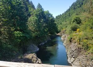 The Swimming Holes Along This Riverside Trail In Oregon Are Perfect On A Summer